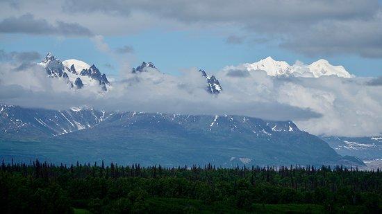 Denali View South