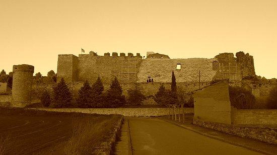 Castillo de Trigueros del Valle