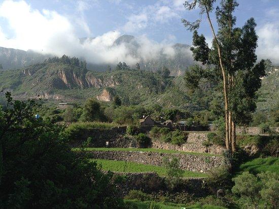 Cotahuasi Photo