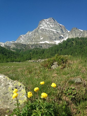 Varzo, Italy: Panorama dell' Alpe Veglia