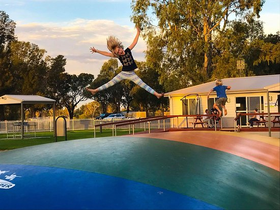 Pictures of Waikerie Holiday Park - Waikerie Photos