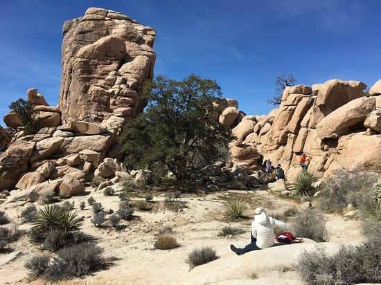 Hidden Valley: People enjoyed climbing on the rocks.