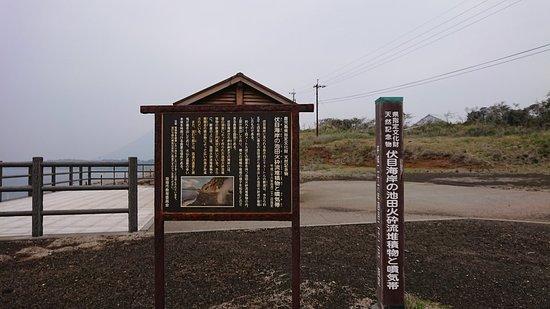 Fushime Kaigan no Ikedaka Sairyutaisekibutsu to Funkitai