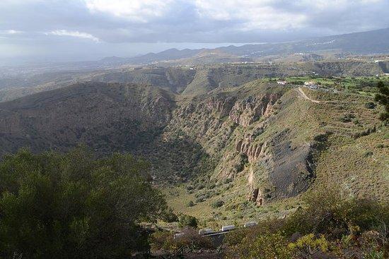 Escursione sulle coste di Las Palmas: escursione privata alla caldera