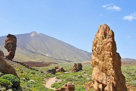 Excursão Terrestre em Tenerife...