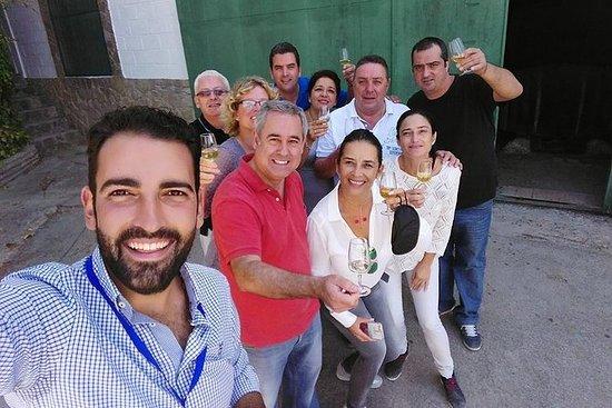 Jerez vinkjeller tur og smaker