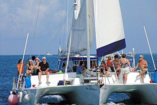 Sortie en catamaran et plongée libre...