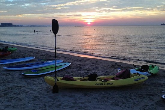 Sunset Dolphin Kayak Tours