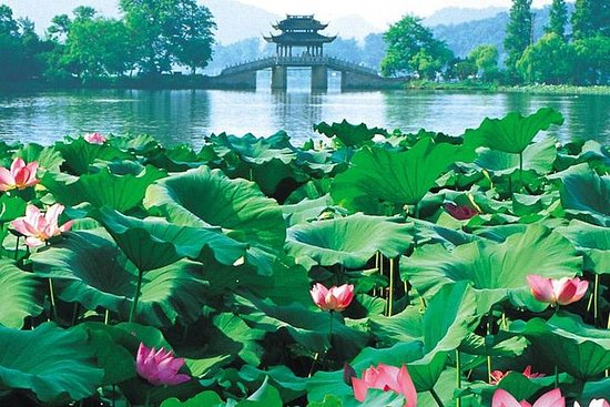 Day Tour of Picturesque Hangzhou