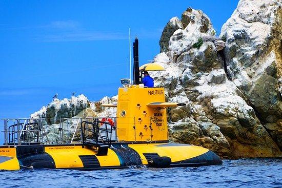 45-minutters halv-ubåt tur på...