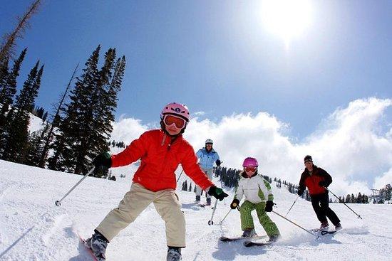 Viagem de um dia de neve ou esqui a...