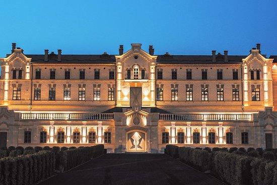 来自基希讷乌的葡萄酒之旅,来自Castel MIMI的葡萄酒之旅