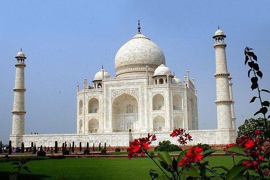 Privat Taj Mahal Dagstur Med Tog Med...