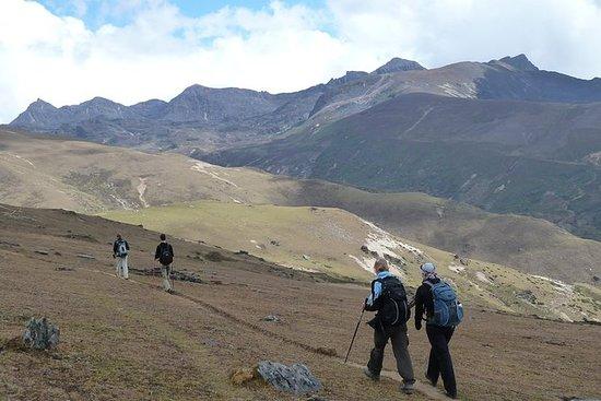 不丹徒步旅行,Druk Path Trek