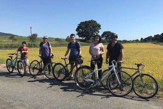 Lokal sykkelopplevelse for å se Mt...