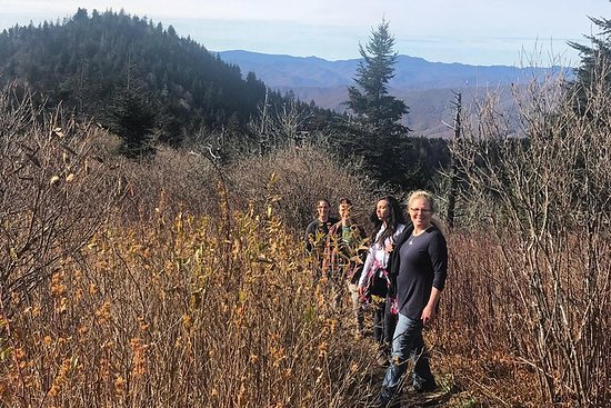 Hike in the Blue Ridge Mountains with...