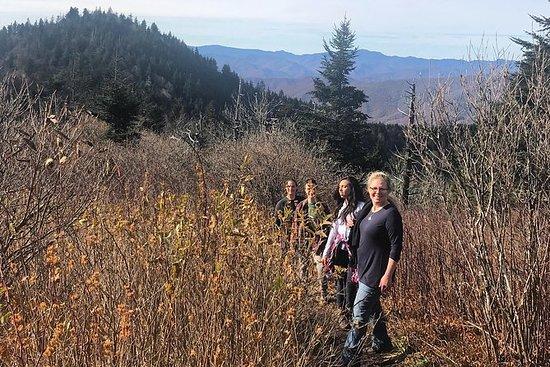 Escursione nelle Blue Ridge Mountains