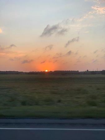 Phoenix West II: Alabama sunset