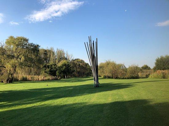 Nirox Sculpture Park Photo
