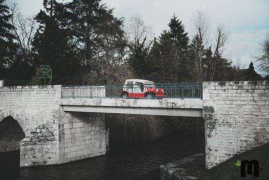 Utleie av elektriske og vintage biler...