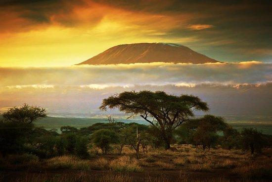 Rota do Monte Kilimanjaro Marangu