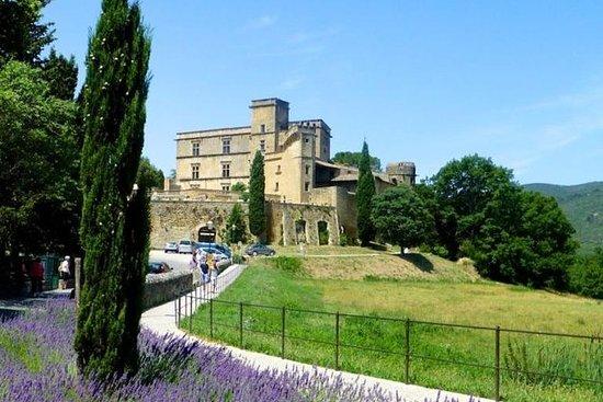 Provence Private Tour in Minivan