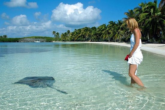 Isla Contoy & Isla Mujeres fra Cancun...