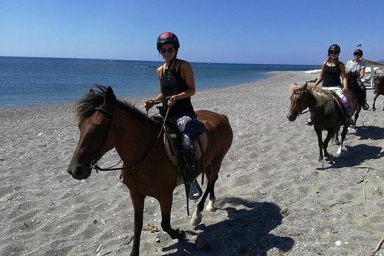 Buceo y equitación