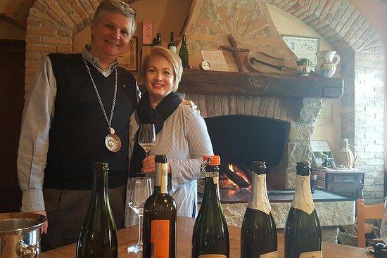 Prosecco Wine Tour (all-inclusive hel...