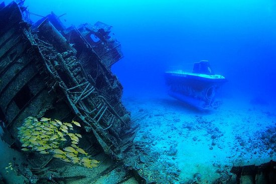 ブルーサファリ潜水艦、ユニショアーズ、インド洋で