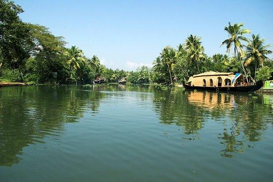 Fra Cochin Port: Backwaters av...