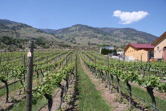 Golden Mile Wine Tour