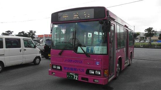 Miyako Kyoei Bus