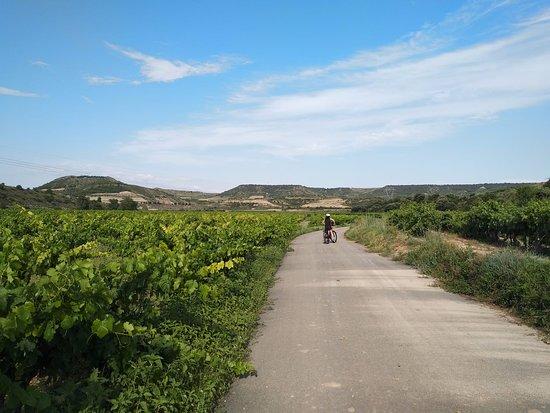 Rioja Rentabike