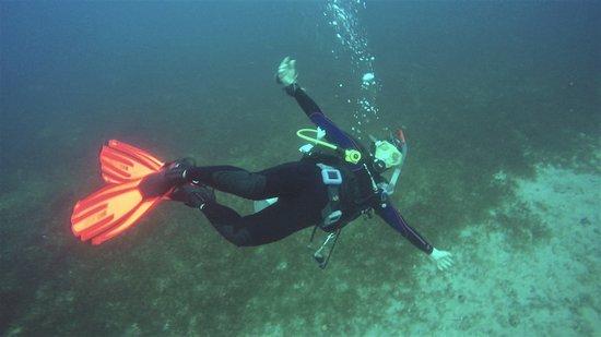 Dive Fair Helen