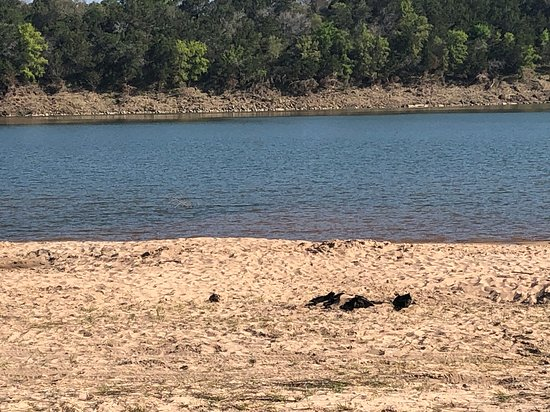 Shaffer Bend Recreation Area 2019 Marble Falls