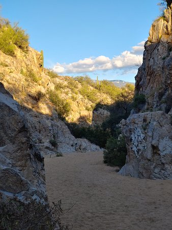 Oro Valley, AZ: The Canyon