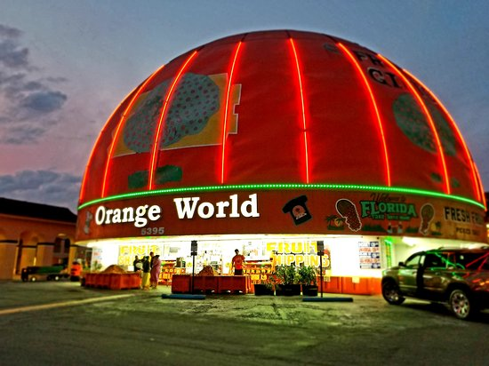 Eli's Orange World