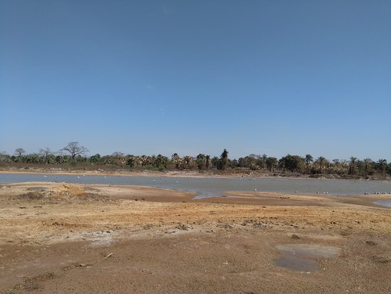Sanyang, Gambia: The first of the lakes during our exclusive excursion