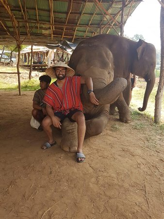 I had an amazing time with the elephants and the JohnnyBoy team! I highly recommend to all those who visit Chiang Mai.
