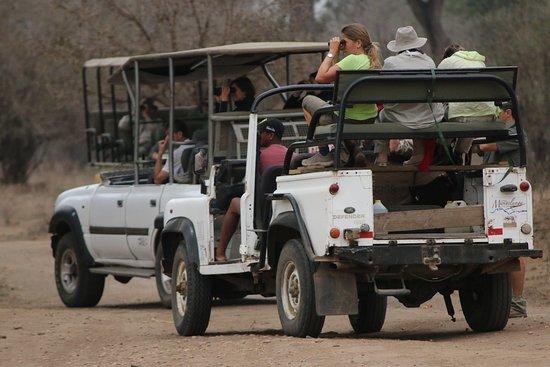 Mana Pools National Park, Zimbabwe: Incredible game drives