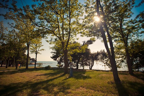 Landscape - Picture of Camping Savudrija - Tripadvisor