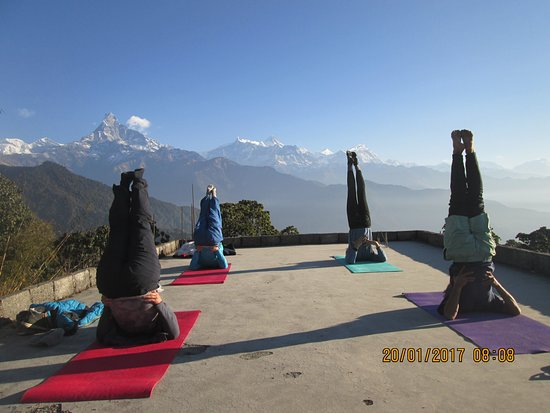 Nepal Academy Treks & Expedition