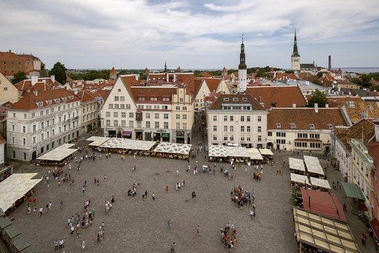 Tours of Tallinn