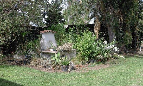 Tragliatella, Italy: Il giardino