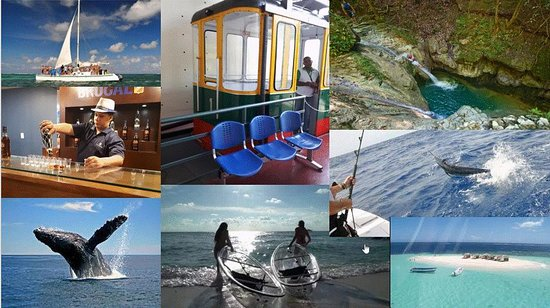 bcedbaa64b6 Elvis Tours Puerto Plata