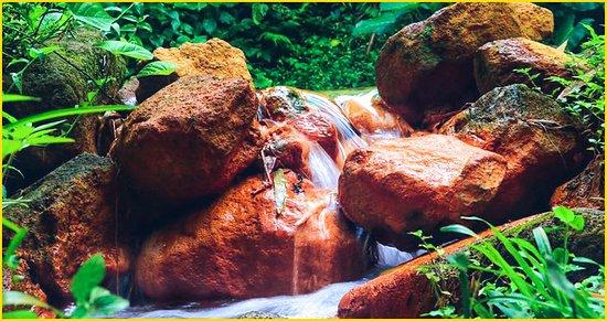 Clabony Sulphur Hot Spring