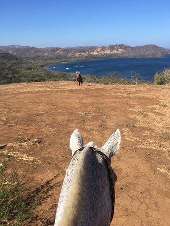 Hotel Bosque del Mar Playa Hermosa: Horseback riding trip
