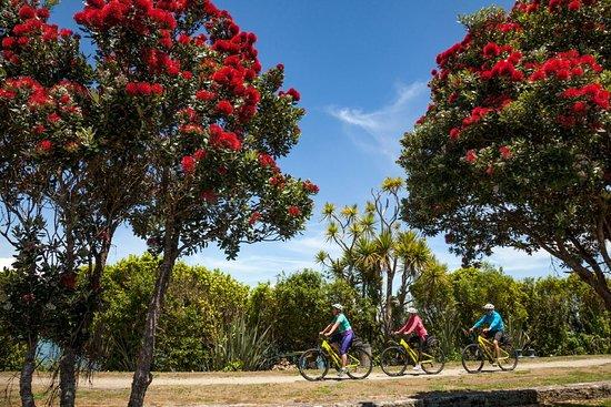 Cycle Journeys