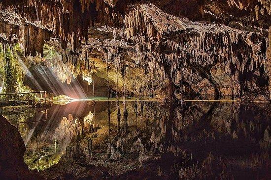 Cenote Chaak Tun Tour in Playa del...